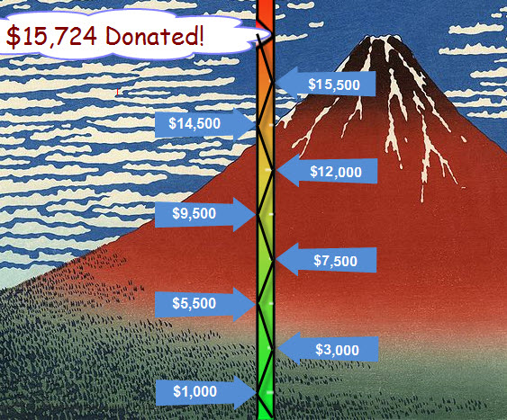 Project Fuji Fundraising Total
