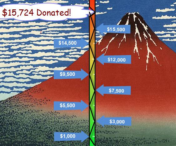 Project Fuji Fundraising Total